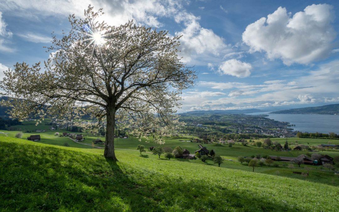 Mountainbike-Weekend Best of Usserschwyz