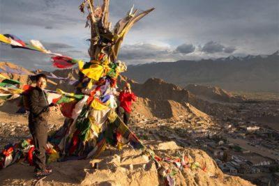 Bikereise in Ladakh: Goldener Herbst