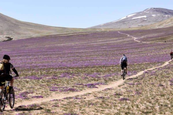 Bikereise Ladakh Explorer